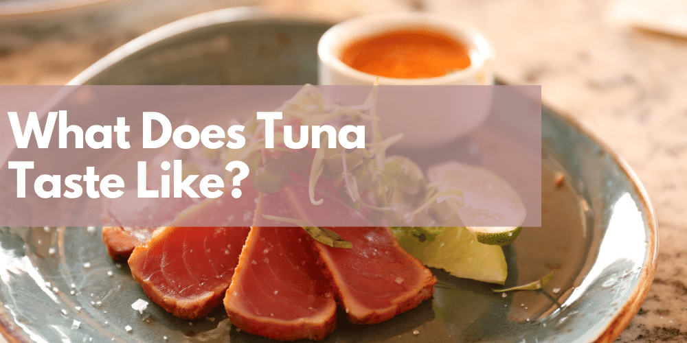 What Does Tuna Taste Like